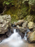 Rill from cave in forest Stock Photos