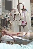 Rim da medicina dos cuidados médicos da diálise fotografia de stock royalty free