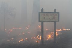 The Rim Fire In Yosemite ~ 2013 ~ Smoke & Fire Wit. Photo of The Rim Fire In Yosemite ~ 2013 ~ Smoke & Fire With Fire Restriction Sign. The Rim Fire in Stock Photo