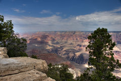 The rim over Grand Canyon. The Grand Canyon seen from the south rim, with bordering trees royalty free stock photos
