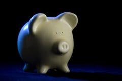 RIM porcin léger de côté image libre de droits