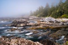 Rim Trail Pacifique sauvage, Ucluelet, sur la péninsule d'Ucluelet sur la côte ouest de l'île de Vancouver en Colombie-Britann images stock