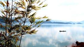 Rima pallida del bambù di Lvhu Fotografie Stock