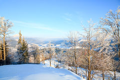 Rime covered trees in winter mountain Stock Images