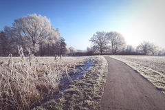 Rime frost landscape at field in Havelland Brandenburg - German Royalty Free Stock Photo