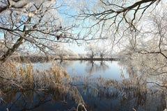 Rime frost landscape at Havel river Brandenburg - Germany Royalty Free Stock Photos