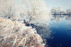 Rime frost landscape at Havel river Brandenburg - Germany Royalty Free Stock Images