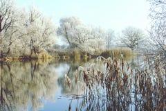Rime frost landscape at Havel river Brandenburg - Germany Stock Photography