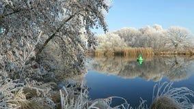 Rime frost landscape at Havel river Havelland, Brandenburg - Germany. Morning hours stock footage