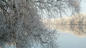 Rime frost landscape at Havel river Havelland, Brandenburg - Germany. Morning hours. Hoarfrost landscape at Havel river Havelland, Brandenburg - Germany. Morning stock video footage