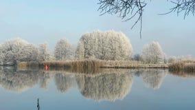 Rime frost landscape at Havel river Havelland, Brandenburg - Germany. Morning hours. Hoarfrost landscape at Havel river Havelland, Brandenburg - Germany. Morning stock footage