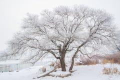 Rime Island - Jilin Province - China Royalty Free Stock Photography