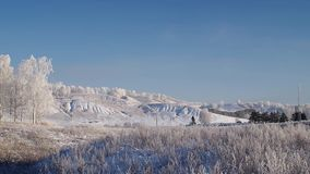 Rime landscape with birch trees and hills, slow panorama. Slow panoramic winter landscape with birch trees and hills stock footage