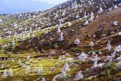 The rime landscape of the high plain stock photos