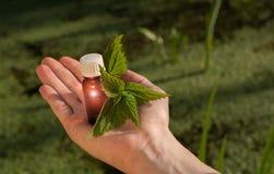 Rimedi naturali, terapia - medicina di erbe Fotografia Stock Libera da Diritti