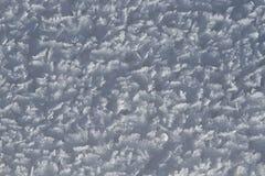 Rimfrost på snödetaljbakgrund Royaltyfria Foton
