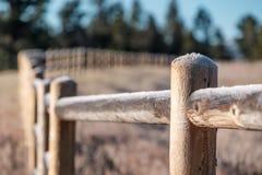 Rimfrost på staketet Arkivfoton