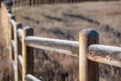 Rimfrost på staketet Royaltyfri Bild