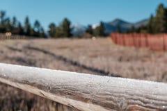 Rimfrost på staketet Royaltyfri Foto
