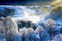 Rimfrostar i vintern, Arshan, Inner Mongolia, Kina Royaltyfri Bild