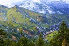 Rimfrostlandskapet av den höga slätten Arkivfoto