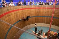 Rimini, Italie - 7 05 2018 : Exposition de moto des diables russes dans le grand baril en bois avec des tours compliqués de cirqu Image stock