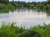 Rimini - Pond in the public park Stock Images