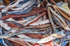 Rimmad fisk (torkad fisk) som är till salu på marknaden Arkivbilder
