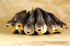 Rimmad torkad fisk i papper Royaltyfri Bild
