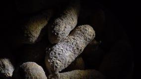 Rimmade jordnötter i ett skal lager videofilmer
