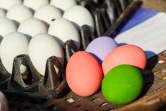 Rimmat ägg/easter ägg/mång- färgägg i ask Royaltyfria Foton