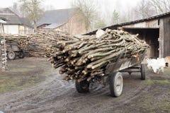 Rimorchio del carretto antiquato tagliato degli agricoltori della legna da ardere a Poland& x27; vita rurale della campagna di s Immagini Stock