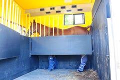 Rimorchio del cavallo Fotografia Stock Libera da Diritti
