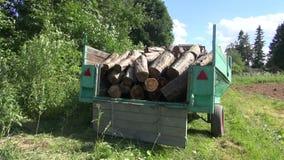 Rimorchio di legno del ceppo del carico dell'uomo video d archivio