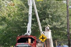 Rimozione dell'albero in una cittadina Fotografia Stock Libera da Diritti