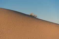 Rimpelingen in duinen in Monahans Sandhills Stock Foto's
