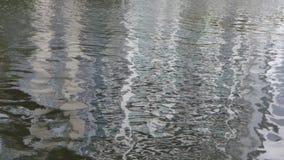 Rimpelingen in het water stock videobeelden
