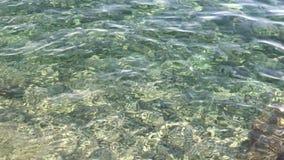 Rimpelingen op de oppervlakte van het duidelijke Adriatische overzees stock videobeelden