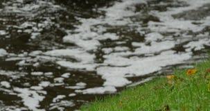 Rimpelingen op het water met vuil schuim stock footage