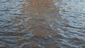 Rimpelingen op oppervlakte van Moskva-rivier in de herfstavond stock video