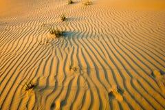 Rimpelingen in zand in woestijn royalty-vrije stock afbeelding