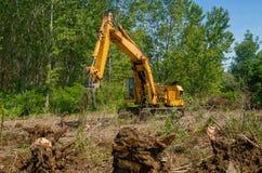 Rimuova le radici con l'escavatore Fotografia Stock