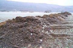 Rimy manure heaps Stock Image