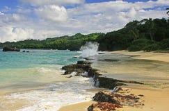 Rincon beach, Samana peninsula Stock Photography