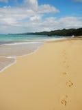 Rincon beach, Samana peninsula Stock Image