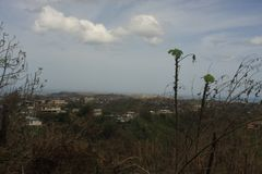 Rincon i Puerto Rico efter orkanen Maria arkivbilder