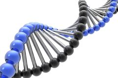 Rinda de la DNA Imagen de archivo libre de regalías