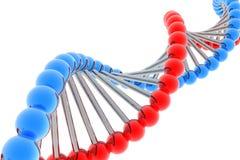 Rinda de la DNA Fotos de archivo