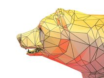 Rinda el ejemplo de la cabeza de oro del oso Imagen de archivo libre de regalías