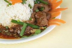 Rindfleisch-Eintopfgericht-Bruststück Stockfotografie